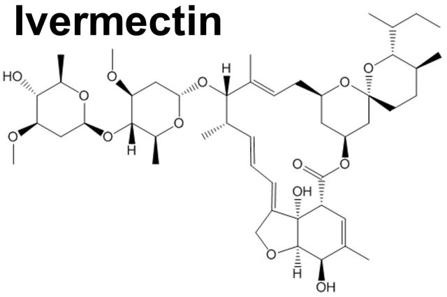 Vaccines Cannot Treat Or Cure Covid-19. Clinical Studies Prove Ivermectin Does